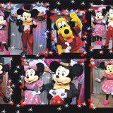 Mickey, Donald, Pluto, Goofy